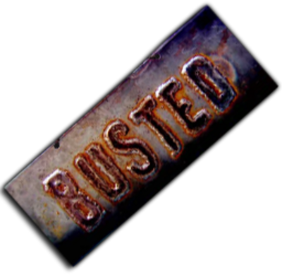 Blog_busted